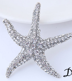 Crystal star brooch