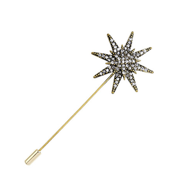 Star brooch pin